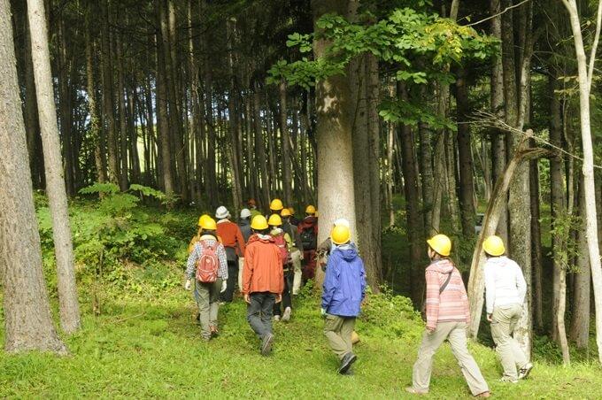 若手林業ビジネスサミットの過去の様子