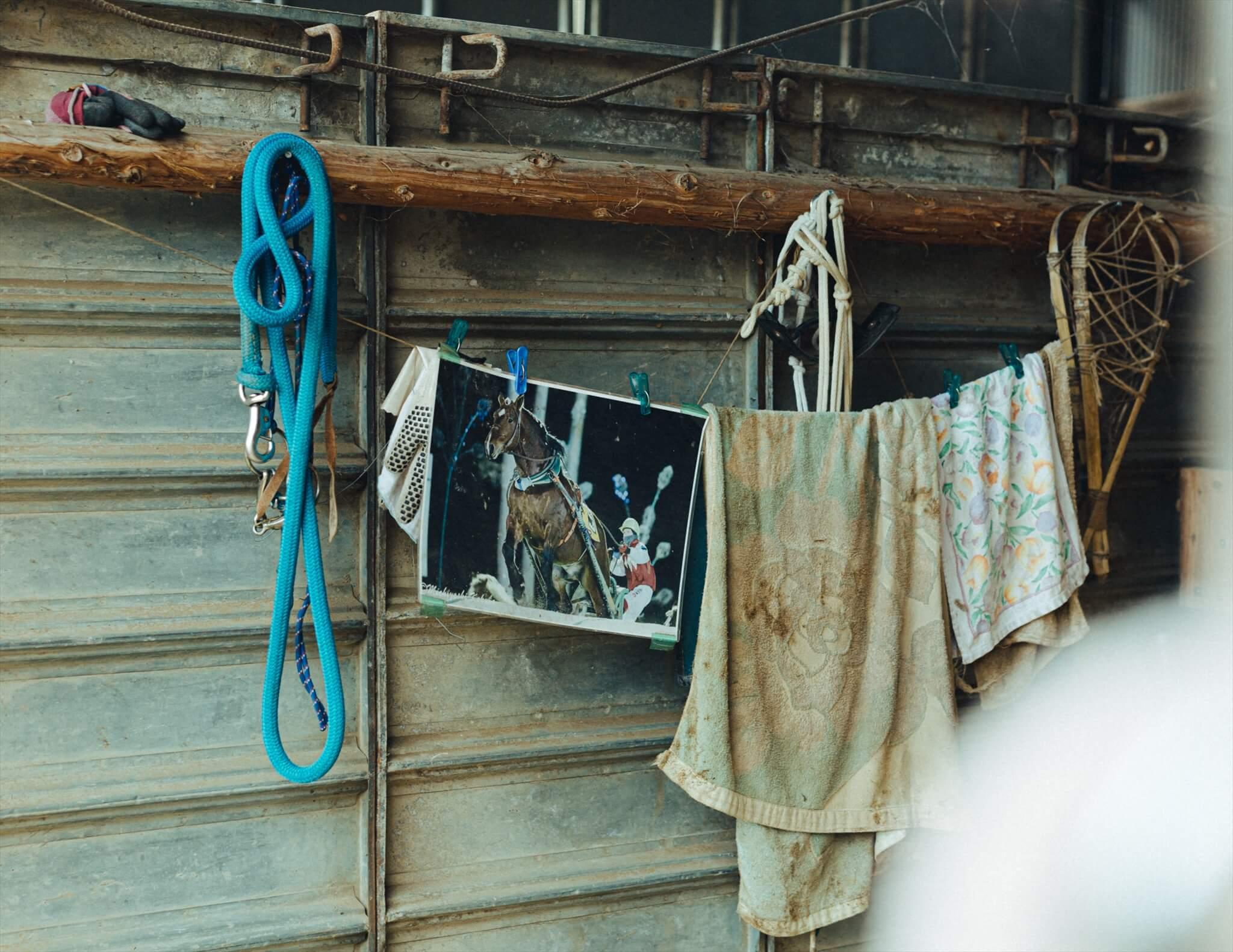 馬小屋にはヤマトがばんえい競馬で活躍していたときの写真が飾られていた