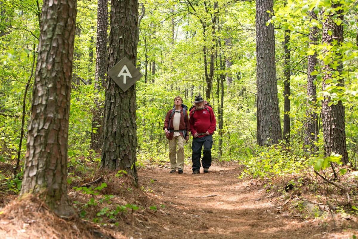映画『ロング・トレイル』のワンシーン。森林の中を歩く主人公のビルと悪友のカッツ