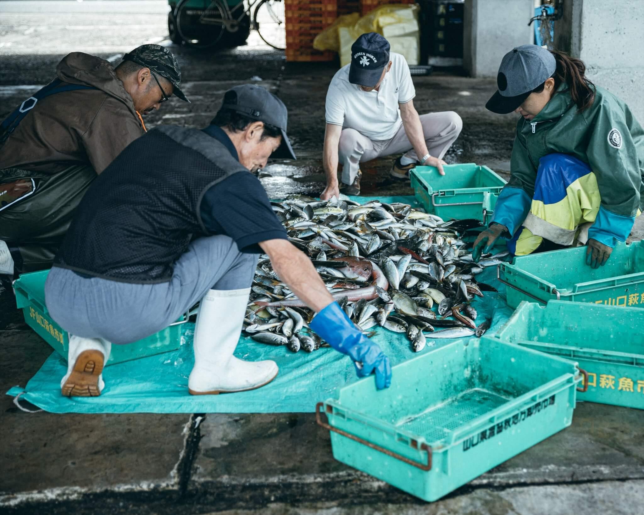 魚を仕分けたら市場へ