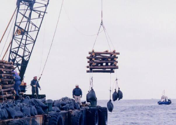 井桁に組まれた間伐材魚礁が海に沈められる様子