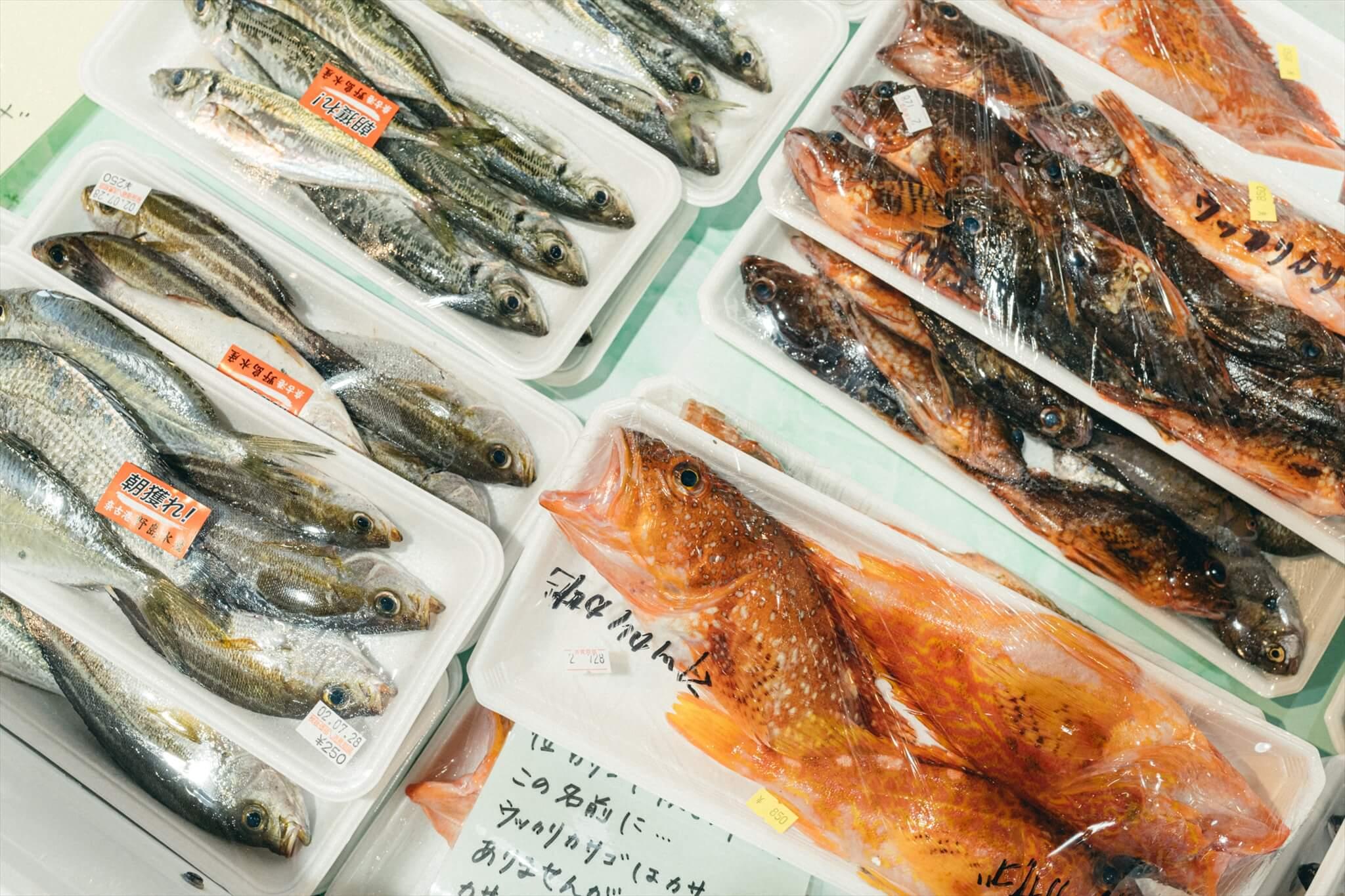 道の駅阿武では朝獲れの鮮魚を販売