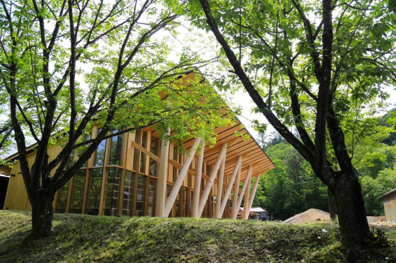 岐阜県にできた森林総合教育センターである「morinos」の外観